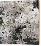 White Lilacs Wood Print