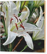 Mother's Day  Lilies  Wood Print