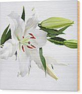 White Lily And Buds Wood Print