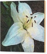 White Lily Listening Wood Print