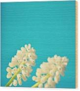 White Muscari Flowers Wood Print by Photo by Ira Heuvelman-Dobrolyubova