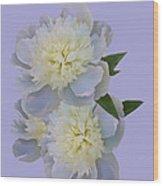 White Peonies On Lavender Wood Print