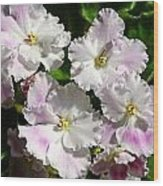 White Pink Ruffled Violet Wood Print