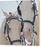 White Ponies Wood Print