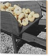 White Pumpkin Harvest Wood Print