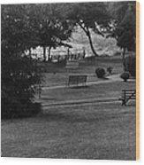White Roe Lake Hotel - Livingston Manor Ny - Lawn To Lake Wood Print