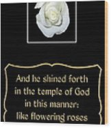 White Rose With Bible Verse From Sirach Wood Print