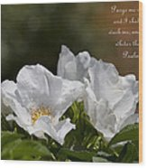 White Roses - Purge Me With Hyssop Wood Print