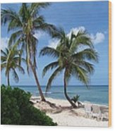 White Sand Beach Wood Print