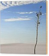 White Sands National Monument 1 Wood Print