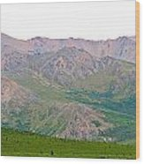 White Sky Wood Print