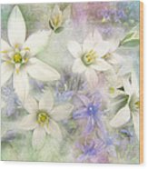 White Stars II Wood Print