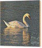 White Swan At Sunset Wood Print