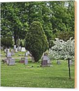 White Tree In Cemetery Wood Print