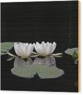 White Water-lily 6 Wood Print