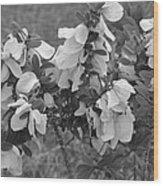 White Wild Flowers B W Wood Print