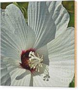 White Wildflower I Wood Print