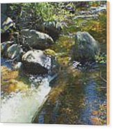 White Wolf Creek Wood Print