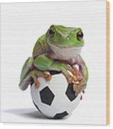 Whites Tree Frog On Small Football Wood Print