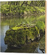 Whitewater River Spring 12 Wood Print
