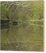 Whitewater River Spring 13 Wood Print