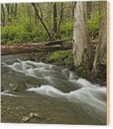Whitewater River Spring 18 Wood Print