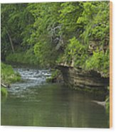 Whitewater River Spring 5 B Wood Print