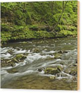 Whitewater River Spring 8 A Wood Print