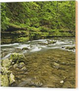 Whitewater River Spring 8 C Wood Print