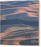 Whitman County Granary At Sunset Wood Print