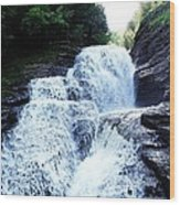 Whittaker Falls Ny Wood Print