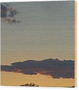 Whittier Evenings Soiree 5 28 12 E Wood Print