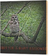 Whoooo Wishes  You A Happy Halloween - Greeting Card - Owl Wood Print