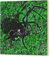 Wicked Widow - Green Wood Print