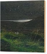 Wicklow Mountains And Lake Wood Print