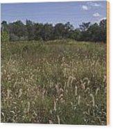 Wide Open Field Wood Print