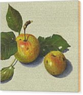 Wild Apples In Color Pencil Wood Print