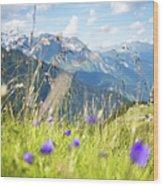 Wild Flower And Grass Wood Print