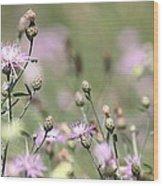 Wild Flowers - Just Wild Wood Print