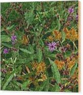 Wild Flowers Wood Print by Beverly Hammond