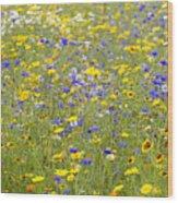 Wild Flowers In A Field Wood Print