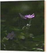 Wild Geranium In Woodland Light Wood Print