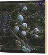 Wild Grapes Abstracted Wood Print