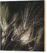 Wild Grasses Wood Print