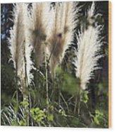 Wild Life Wood Print