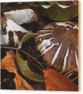 Wild Mushroom Wood Print
