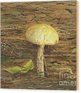 Wild Mushroom On The Forest Floor Wood Print