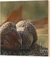 Wild Nuts Wood Print
