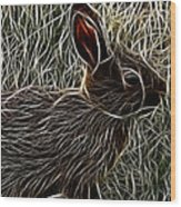 Wild Rabbit Wood Print