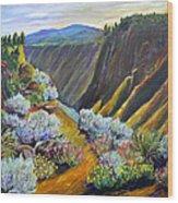 Wild Rivers New Mexico Wood Print